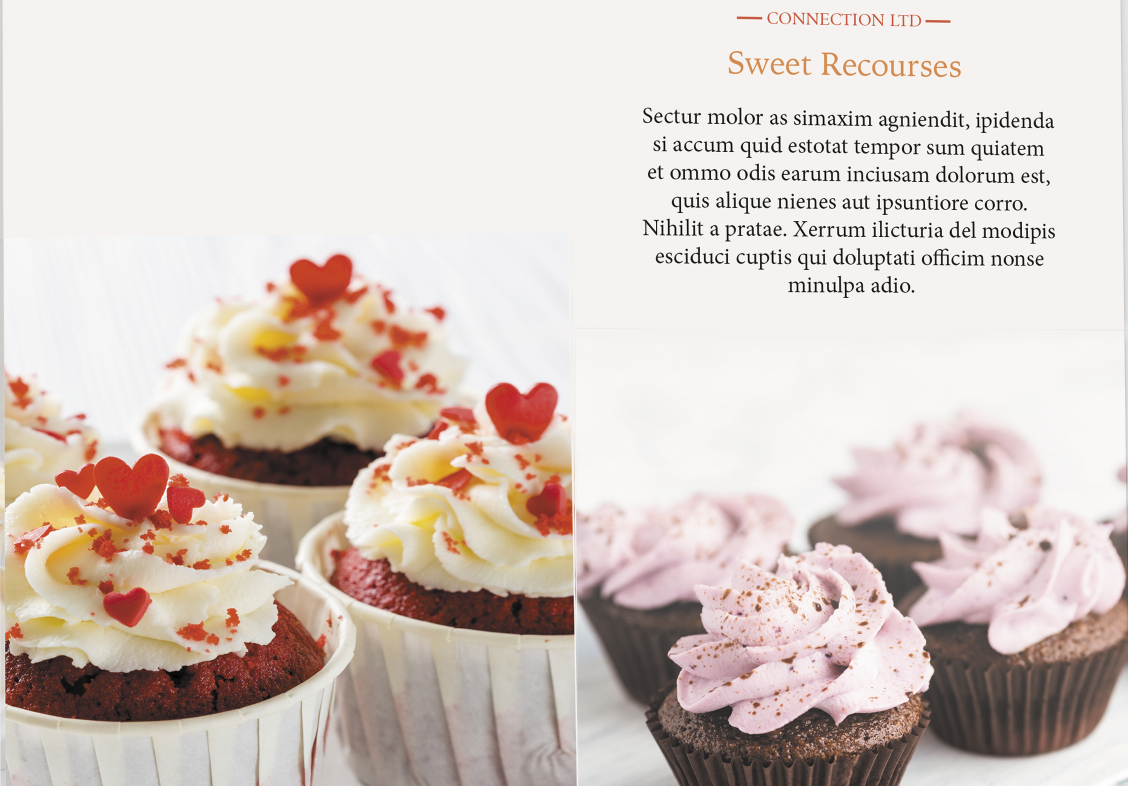 Cupcakes company trifold brochure